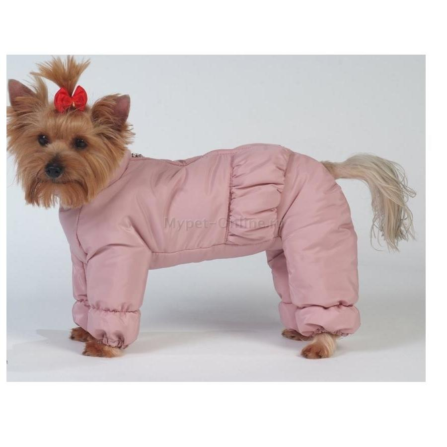 одежда для собак заработок своими руками