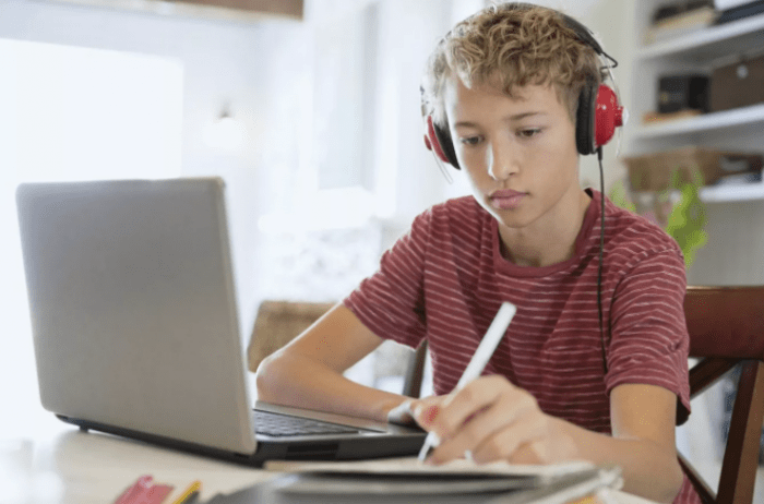 Школа онлайн: дистанционное обучение для детей. Ненаучная фантастика или современные реалии?